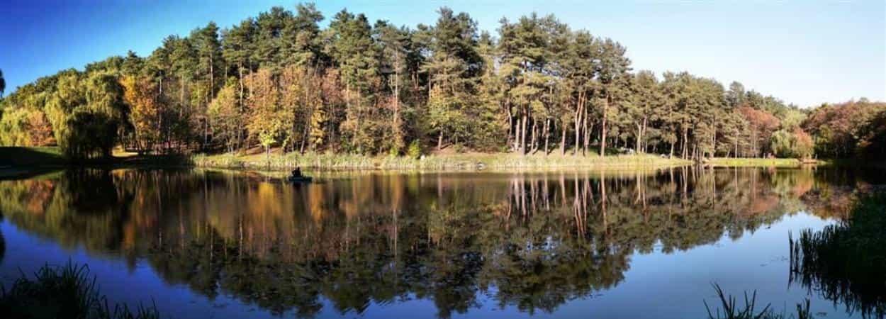 Путешествие в Голосеевский лес + практики на местах Силы + купание в купели