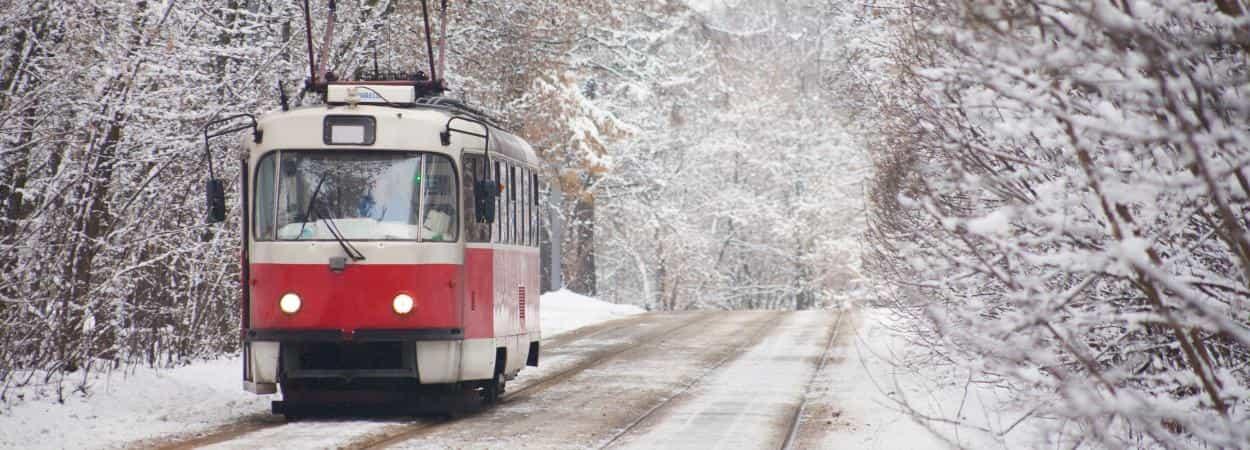 Новогодние истории по дороге в Пущу-Водицу